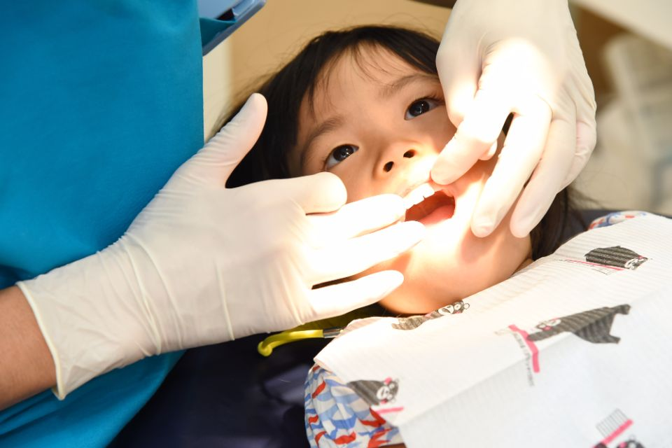 矯正治療中の歯の状態について